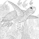 Zentangle stiliserade sköldpaddafisken Royaltyfria Bilder