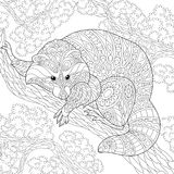 Zentangle stiliserade tvättbjörndjuret stock illustrationer