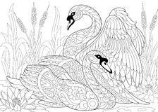 Zentangle stiliserade två svanar Arkivbild