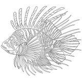 Zentangle stiliserade zebrafish (lionfishen) Royaltyfri Fotografi