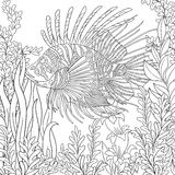 Zentangle stiliserade zebrafish (lionfishen) Arkivfoton