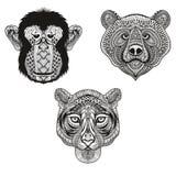 Zentangle stilisierte Tiger, Affen, Bärngesichter Hand gezeichnetes Gekritzel Lizenzfreie Stockfotografie