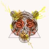 Zentangle stilisierte Tigergesicht im Dreieckrahmen mit Aquarell Stockbilder