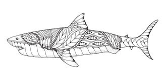 Zentangle and stippled stylized great white shark. Vector, illus. Tration, pattern. Zen art. Black and white illustration on white background. Adult anti-stress Stock Image