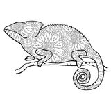 Zentangle style chameleon. Stylized vector animal Royalty Free Stock Photo