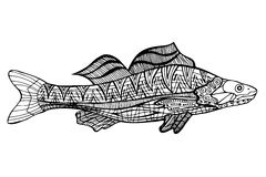 Zentangle  style fish vector. Zentangle style fish vector. Sketch for coloring book. Vector, doodle design elements.  Black and white Royalty Free Stock Photos