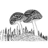 Zentangle style mushrooms monochrome sketch, fir tree coloring page antistress stock vector illustration. For print, for coloring page Royalty Free Stock Photography