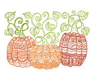 Zentangle style pumkins Royalty Free Stock Images