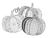 Zentangle a stylisé des potirons illustration stock
