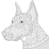 Zentangle a stylisé le chien de pinscher de dobermann Photographie stock