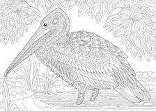 Zentangle a stylisé le pélican illustration stock