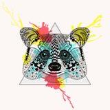 Zentangle a stylisé le visage de raton laveur dans le cadre de triangle avec le watercolo illustration libre de droits