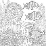 Zentangle stylized aquarium. Stylized composition of tropical fish, calamari (squid), underwater seaweed, corals and starfish. Freehand sketch for adult anti Stock Image