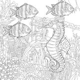 Zentangle stylized aquarium. Stylized composition of tropical fish, seahorse, underwater seaweed, corals and starfish. Freehand sketch for adult anti stress Stock Photo