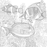 Zentangle stylized aquarium Royalty Free Stock Photography