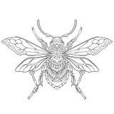 Zentangle stylized beetle insect Stock Photo