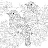 Zentangle stylized birds Royalty Free Stock Image