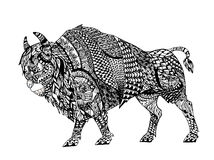 Zentangle stylized Black Bison. Royalty Free Stock Image