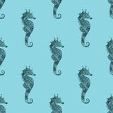 Zentangle stylized black Sea Horse blue seamless pattern. Stock Images