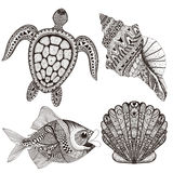 Zentangle stylized black sea shells, fish and turtle. Hand Drawn