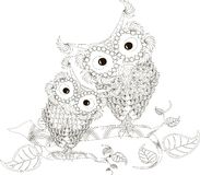 Zentangle stylized black and white two owls sitting on the tree branches, hand drawn, vector Royalty Free Stock Image