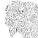 Zentangle stylized buffalo Stock Image