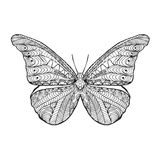 Zentangle stylized butterfly. Stock Images