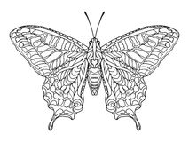 Zentangle stylized butterfly. Royalty Free Stock Photography