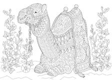 Zentangle stylized camel and flowers Stock Images