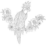 Zentangle stylized cockatoo parrot Stock Images