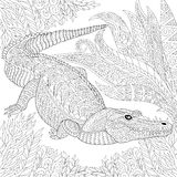 Zentangle stylized crocodile (alligator) Stock Photo