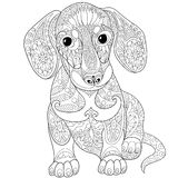 Zentangle stylized dachshund dog Royalty Free Stock Photo