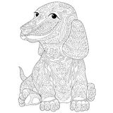 Zentangle stylized dachshund (teckel) Stock Photo