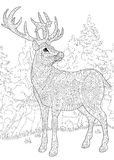 Zentangle Stylized Deer Royalty Free Stock Photo