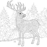 Zentangle stylized deer. Zentangle stylized cartoon deer (stag, christmas reindeer). Hand drawn sketch for adult antistress coloring book page, T-shirt emblem Royalty Free Stock Photo