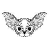 Zentangle stylized desert mini Fox face. Hand Drawn vector illus Stock Images