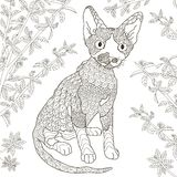 Zentangle stylized devon rex cat for coloring page Royalty Free Stock Photos