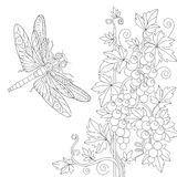 Zentangle stylized dragonfly and grape vine Royalty Free Stock Photography