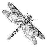 Zentangle Stylized Dragonfly. Sketch For Tattoo Or T-shirt. Stock Photo