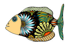 Zentangle stylized Fish Stock Photography