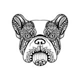 Zentangle stylized French Bulldog face. Hand Drawn Dog doodle ve Royalty Free Stock Photography