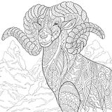 Zentangle stylized goat Royalty Free Stock Images