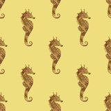 Zentangle stylized gold Sea Horse seamless pattern. Stock Image