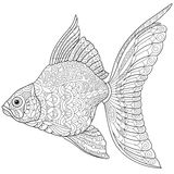 Zentangle stylized goldfish