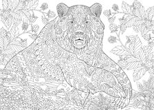 Zentangle stylized grizzly bear. Zentangle stylized cartoon bear (grizzly bear) among blackberries or raspberries in woodland. Hand drawn sketch for adult stock illustration