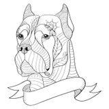 Zentangle stylized head of italian mastiff cane corso. Vector, i Stock Images