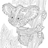 Zentangle stylized koala bear. Zentangle stylized cartoon koala bear sitting among tree leaves. Hand drawn sketch for adult antistress coloring page, T-shirt Stock Photo