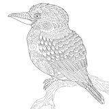 Zentangle stylized kookaburra bird Royalty Free Stock Images