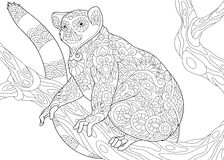 Zentangle stylized lemur. Stylized wild lemur, madagascar mammal animal. Freehand sketch for adult anti stress coloring book page with doodle and zentangle vector illustration