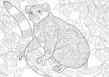 Zentangle stylized lemur. Stylized wild lemur, madagascar mammal animal. Freehand sketch for adult anti stress coloring book page with doodle and zentangle royalty free illustration